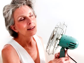 Hot Flashes:  What To Eat, And How To Supplement
