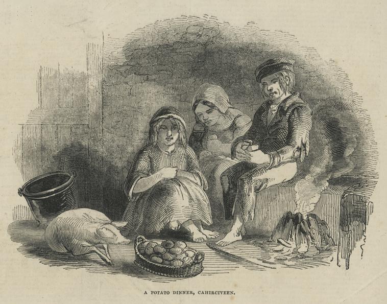 Famine sketch